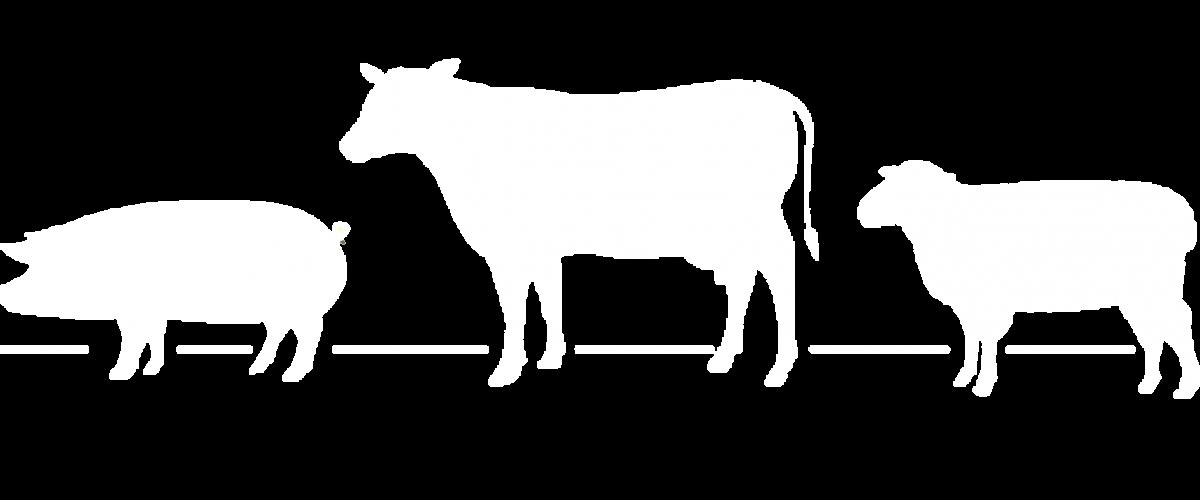 March House Farm Animal logo
